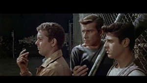 Release Date: October 18, 1961  This brilliant film sets the ageless story of Romeo and Juliet against a backdrop of gang warfare in 1950s New York.  A love affair is fated for tragedy amidst the vicious rivalry of two street gangs the Jets and the Sharks. When Jets member Tony (Richard Beymer) falls for Maria (Natalie Wood), the sister of the Sharks leader, it's more than these two warring gangs can handle. And as mounting tensions rise, a battle to the death ensues, and innocent blood is shed in a heartbreaking finale.  Cast: Natalie Wood, Richard Beymer, Russ Tamblyn, Rita Moreno, George Chakiris, Simon Oakland, Ned Glass, Tucker Smith  Studio: United Artists Director: Robert Wise, Jerome Robbins Screenwriter: Ernest Lehman Genre: Crime, Drama, Musical  Official Website: Not Available