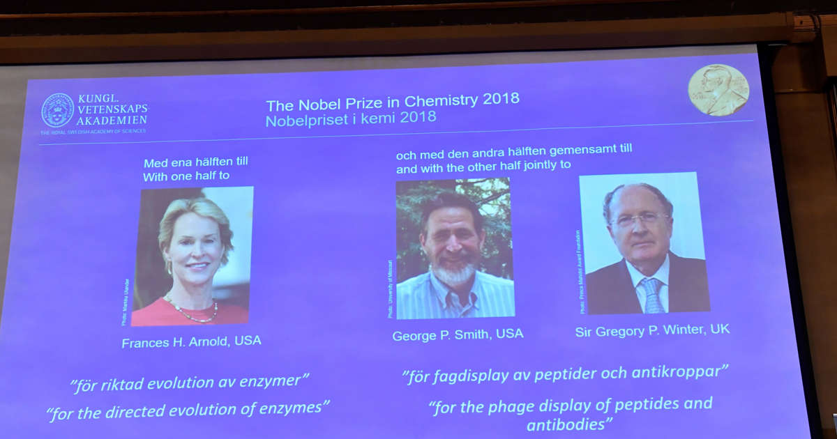 Trio wins chemistry Nobel for work on antibody drugs and detergents