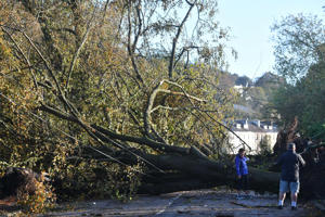 Fallen trees that were blown down by Storm Ophelia blocking a road in Irelands southwest city of Cork, on October 17, 2017.