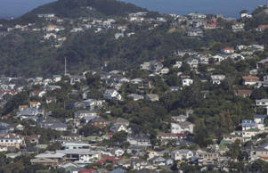 House prices are continuing to rise in Wellington.