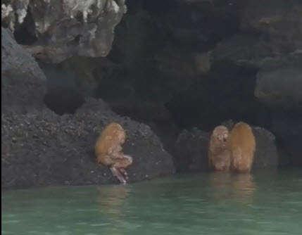 <!--:es-->Captan un misterioso ritual en cueva de Tailandia<!--:-->