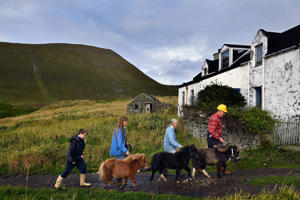 FOULA, SCOTLAND - OCTOBER 01:  Jack, Penny, Sheila and Jim Grear walk their ponies to the Island of Foula  ferry where they will be loaded for market on Shetland on October 1, 2016 in Foula, Scotland. Foula is the remotest inhabited island in Great Britain with a current population of thirty people and has been owned since the turn of the 20th century by the Holbourn family.  (Photo by Jeff J Mitchell/Getty Images)