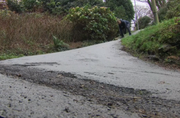 NZ's battle for steepest street
