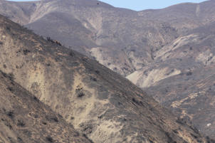 This Nov. 25, 2018, photo shows steep mountain slopes left barren by a wildfire called the Woolsey Fire, west of Malibu, Calif. A powerful winter storm unleashed mudslides in Southern California wildfire burn areas and trapped motorists on a major highway, and the northern part of the state braced for more wet weather Sunday, Jan. 6, 2019. Saturday's deluge loosened hillsides where a major blaze burned in 2018 in and around Malibu, clogging the Pacific Coast Highway with mud and debris. (AP Photo/John Antczak)