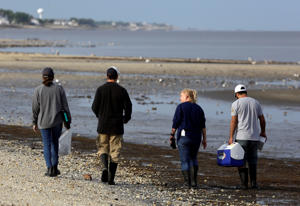 In this May 22, 2018 photo, left to right, Karlie Woodard, Patrick Seiler, and Pamela McKenzie and Rabeh El Shesheny of St. Jude Children's Research Hospital walk out to collect bird droppings near horseshoe crabs at Kimbles Beach, Middle Township NJ.  Each spring, shorebirds migrating from South America to the Arctic stop on the sands of Delaware Bay to feast on masses of horseshoe crab eggs. It's a marvel of ecology. It's also one of the world's hot-spots for bird flu and a bonanza for scientists seeking clues to how influenza evolves so they just might better protect people.  (AP Photo/Jacqueline Larma)