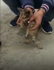 Man saves kitten stuck in water pipe for two days