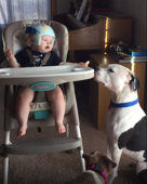 Baby gives dog a cookie and then is sad it's gone