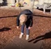 Child falls asleep on swing