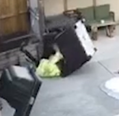 Thief gets taste of karma while trying to steal backyard furniture