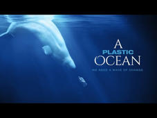 A Plastic Ocean is an adventure documentary shot on more than 20 locations over the past 4 years. Explorers Craig Leeson and Tanya Streeter and a team of international scientists reveal the causes and consequences of plastic pollution and share solutions. WANT TO SEE THIS FILM? GO TO http://aplasticocean.film/ AND JOIN OUR CAUSE! https://youtu.be/6zrn4-FfbXw   COMING SOON  Release date: 2016 Facebook: https://www.facebook.com/aplasticoceanfilm/  Site: www.aplasticocean.film