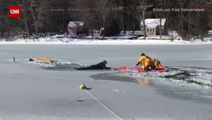 Man tumbles into icy waters trying to save his dog