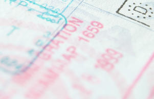 A man has been sentenced over an immigration scam.