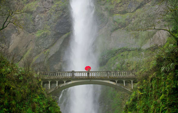 The 112-km road passes through Colombia River Gorge, while travelling east out of Portland, Oregon. The stretch offers a splendid view of the dramatic waterfalls on USA's second longest river.
