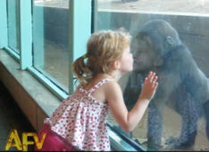 Gorilla Girl Playdate!