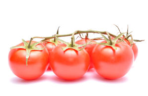Tomatoes isolated on white background in studio