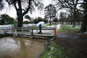 A Christchurch City Council staff report has put the cost of a tidal barrier on the Avon and Heathcote Rivers at $430 million - or more.