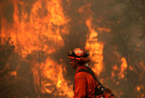An inmate monitors a backfire during a burn operation to head off the Rocky Fire on August 2, 2015 near Clearlake, California. Over 1,900 firefighters are battling the Rocky Fire that has burned over 46,000 acres since it started on Wednesday afternoon. The fire is currently five percent contained and has destroyed at least 14 homes.
