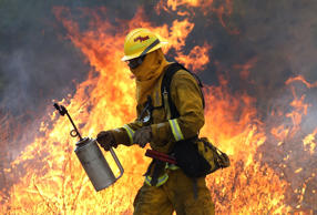 A Cal Fire firefighter moves away from a tall flame as he uses a drip torch to burn dry grass during a backfire operation to head off the Rocky Fire on August 3, 2015 near Clearlake, California.