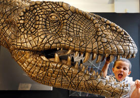 "Noah Wiles, three years old, looks at a massive bronzed fibre glass model of a Tyrannosaurus Rex on display during a press preview at Christie's auction rooms in London, Monday, Aug. 3, 2015. The dinosaur estimated to sell for 10,000-15,000 pounds ($14,000-$21,000) will be auctioned in the ""Out of the Ordinary"" sale on Sept. 10 in London. (AP Photo/Kirsty Wigglesworth)"