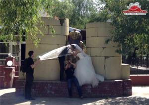 Photographer goes to extreme angles to take wedding photos at Flamingo World.