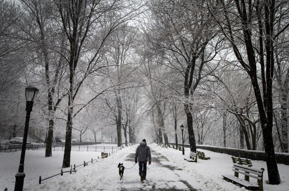 Slide 1 af 33: A man walks his dog in falling snow in Riverside Park in upper Manhattan.