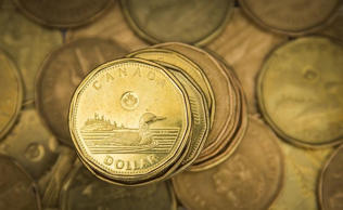 "A Canadian dollar coin, commonly known as the ""Loonie"", is pictured in this illustration picture taken in Toronto"