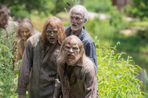 Walker - The Walking Dead _ Season 6, Episode 8
