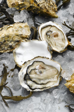 "<p>Similar to chicken, shellfish such as clams, oysters, lobster, have <a href=""http://www.redbookmag.com/beauty/makeup-skincare/advice/g1776/good-skin-foods/?slide=8"">tons of zinc</a>, which helps keep your skin looking elastic and plump. Eating that extra lobster roll on your next vacation just got ten times better, no?</p>"