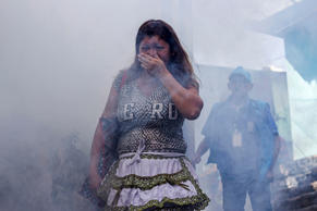 A woman covers her mouth while city workers fumigate insecticide to help combat ...