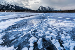 Methane bubbles trapped under frozen Abraham Lake.