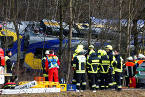 Members of emergency services stand next to a crashed train near Bad Aibling in ...