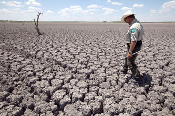 File photo of Texas State Park Police Officer Thomas Bigham walking across the cracked lake bed of O.C. Fisher Lake in San Angelo, Texas. A combination of the long periods of 100-plus degree days and the lack of rain in the drought-stricken region has dried up the lake that once spanned over 5400 acres. Researchers calculated that global warming has made such a Texas heat wave about 20 times more likely to happen during a La Nina year. La Nina is increasingly expected to emerge in the coming months for the first time in four years.