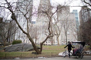 A pedicab driver stops during a tour of New York's Central Park to explain the scenery to his clients, Thursday, Feb. 4, 2016. Mary Altaffer/AP