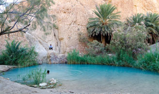 15 most beautiful desert oases in the world