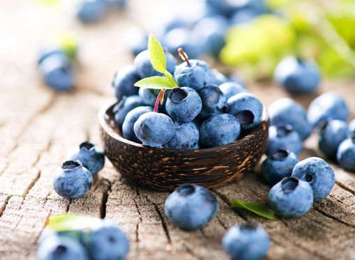<p>If you feel like your immune system has been dwindling lately, pick up a pint of blueberries. Oregon State University recently took a look at over 400 compounds for their ability to boost the immune system, and the study revealed blueberries as a standout due to a compound called pterostilbene. Goodbye Pepto Bismol, hello Pterostilbene! Bored with plain blueberries? Add them to your oatmeal of <a href=