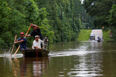 Roland Courville steers a boat across Mill Creek Road as he helps people escape ...