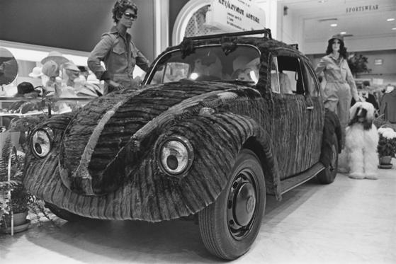A mink fur covered Volkswagen Beetle on display at the Somerset Mall (now called Somerset Collection), Troy, Michigan, USA, April 1976.  (Photo by Barbara Alper/Getty Images)