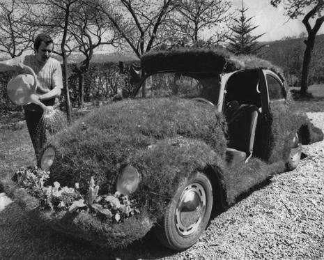 A man watering grass growing on a turfed-over Volkswagen Beetle car, circa 1970. Spring flowers have been planted on the front bumper area. (Photo by Archive Photos/Getty Images)