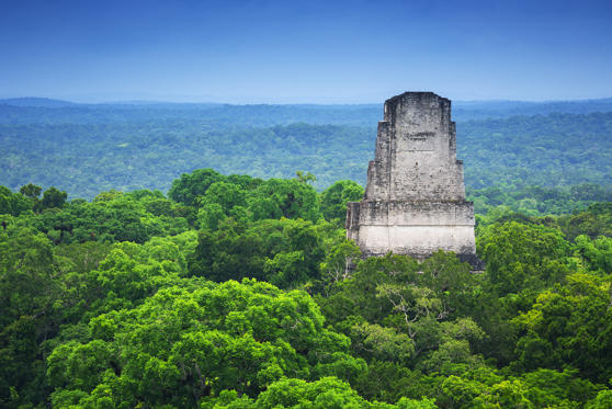 View of one of the various temples on the archeological site of Tikal and the jungle from a top of a of the structures allowed to the public to climb. Roberto A Sanchez
