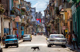 A dog crosses a street adorned with a Cuban flag and a 26-July movement flag in downtown Havana, Cuba, Tuesday, July 26, 2016. Cuba marks the anniversary of the July 26, 1953 rebel attack led by Fidel and Raul Castro on the Moncada military barracks. The attack is considered the beginning of the revolution that culminated with dictator Fulgencio Batista's ouster.