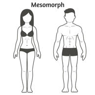 "<span style=""color:#444444;font-family:Lato, serif;font-size:24px;font-weight:bold;line-height:28.8px;background-color:#f9f9f9;"">Mesomorph</span>"