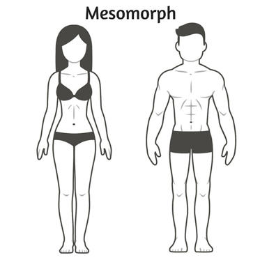 You find it supereasy to build muscle mass, and you are generally proportionally built.Mesomorphs can lose and gain weight easily, are able to build muscle quickly, and usually boast an upright posture. This body type tends to have a long torso and short limbs. Women with a mesomorph body type are strong and athletic. Mesomorphs excel in explosive sports—that is, sports calling for power and speed. The reason for this talent lies in the type of muscle mesomorphs possess. Mesomorphs have a higher percentage of fast-twitch fibers and will gain muscle mass more quickly than any other body type. Basically your genetic makeup suits power and strength. For training, focus on moderate endurance training, high-intensity interval training (HIIT), and plyometrics. You can add in Pilates or yoga to lengthen with strength.To maximize body composition (lean-mass gain, body-fat loss) as a mesomorph, eat good quality fats with moderate carbohydrates and consider timing your protein and branched-chain amino acid intake. On nontraining/exercising days, skip the pretraining snack and just have the green tea or coffee in the afternoon. Eat your usual predinner and evening snacks.: <strong>Mesomorph:</strong> You find it supereasy to build muscle mass, and you are generally proportionally built. Mesomorphs can lose and gain weight easily, are able to build muscle quickly, and usually boast an upright posture. This body type tends to have a long torso and short limbs. Women with a mesomorph body type are strong and athletic. Mesomorphs excel in explosive sports—that is, sports calling for power and speed. The reason for this talent lies in the type of muscle mesomorphs possess. Mesomorphs have a higher percentage of fast-twitch fibres and will gain muscle mass more quickly than any other body type. Basically your genetic makeup suits power and strength. For training, focus on moderate endurance training, high-intensity interval training (HIIT), and plyometrics. You can add in Pilates or yoga to lengthen with strength. To maximise body composition (lean-mass gain, body-fat loss) as a mesomorph, eat good quality fats with moderate carbohydrates and consider timing your protein and branched-chain amino acid intake. On non-training/exercising days, skip the pre-training snack and just have the green tea or coffee in the afternoon. Eat your usual pre-dinner and evening snacks.<br>