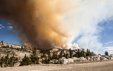 The Meadow wildfire burns, Sept. 7, 2014 in in Yosemite National Park, Calif.