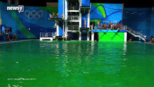 Forget The Gold, Olympic Divers Want To Know Why Their Pool Is Green