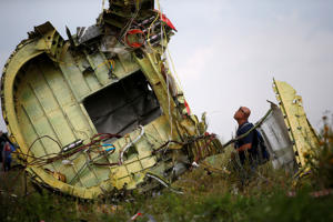 A Malaysian air crash investigator inspects the crash site of Malaysia Airlines Flight MH17, near the village of Hrabove (Grabovo) in Donetsk region, Ukraine, July 22, 2014.