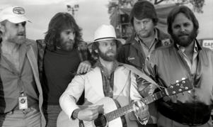 Mike Love, Dennis Wilson, Alan Jardine, Brian Wilson and Carl Wilson.