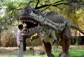 Indian Nature Educator Natwarsinh Rathod cleans the mouth of a Rajasaurus Narmadensis dinosaur model at the Indroda Dinosaur and Fossil Park in Gandhinagar, some 30 km from Ahmedabad.