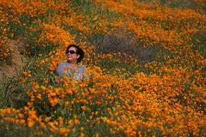 A woman sits in a massive spring wildflower bloom caused by a wet winter in Lake Elsinore, California, U.S., March 14, 2017.