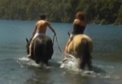 How not to ride a horse out of a lake