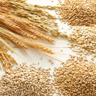 """Going <a href=""""http://www.health.com/health/article/0,,20410322,00.html"""">gluten-free</a> may be a popular trend, but unless you're actually gluten-intolerant or have celiac disease, plenty of reasons exist to continue eating whole grains. They're a tasty way to fill up on both soluble and insoluble fiber, which help you feel full for longer and keep bowel movements regular (oats, barley, and bulgur are especially high sources). Whole grains can also help prevent weight gain: in one study, women who ate whole grains like wheat germ and dark bread had a 49% lower risk of """"major"""" weight gain over time.<br><br>Whole grains also boast a slew of other enviable health benefits: 2015 research found that older people who eat whole grains could have longer lives. And another study found that women who consumed two to three servings of whole grains everyday were 30% less likely to suffer from a heart attack."""
